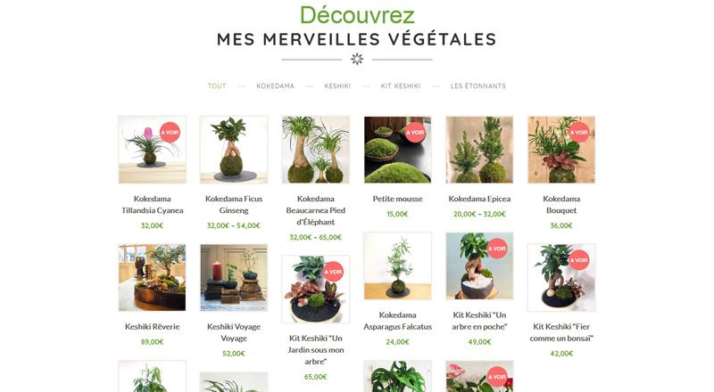Kokenendo Merveilles Végétales